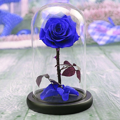 20 cm Cam Fanusta Solmayan Mavi Gül