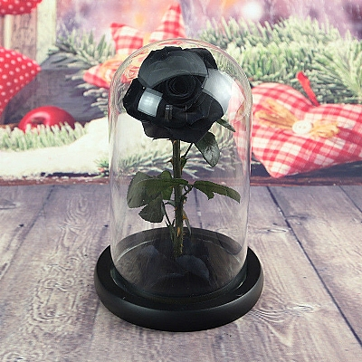 20 cm Cam Fanusta Solmayan Siyah Gül