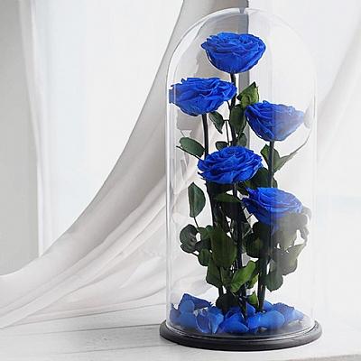 Cam Fanus da Solmayan 5 Mavi Gül Yapay Saplı