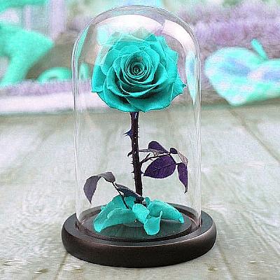 20 cm Cam Fanusta Turkuaz Mavi Solmayan Gül